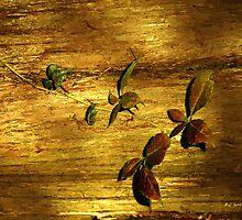 Autumn Rust by RC deWinter