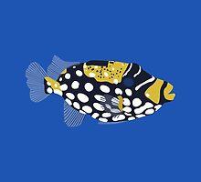 Clown trigger fish illustration by MickeyEdwards