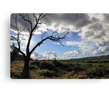 Ranges - Alice Springs, Australia Canvas Print