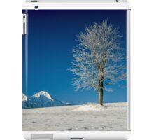 Beauty of loneliness iPad Case/Skin