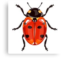 Ladybird beetle Canvas Print