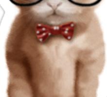 Algebra CAT Sticker