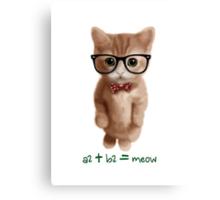 Algebra CAT Canvas Print