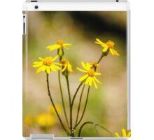 Golden Ragwort iPad Case/Skin