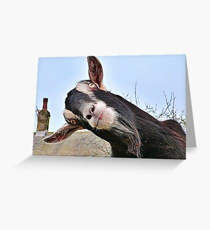 The Nosy Goat (2) Greeting Card