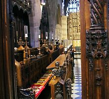Sitting In The Choir Light by Francis Drake
