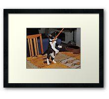joker's playing Framed Print
