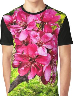 PHONOGRAPH: Pink Spring blossoms Graphic T-Shirt