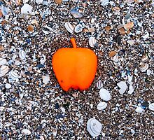 Apple on the Beach - part 2 by AlexFHiemstra