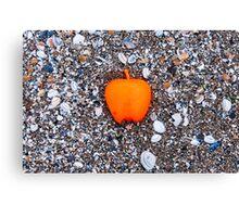 Apple on the Beach - part 2 Canvas Print