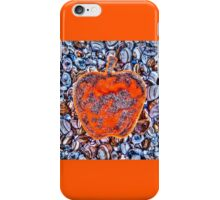 Apple on the Beach - part 4 iPhone Case/Skin
