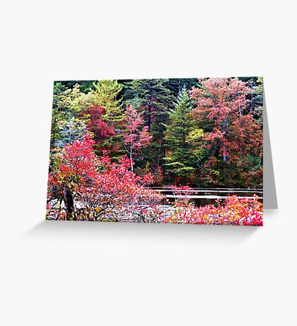 Lakeside Color Greeting Card