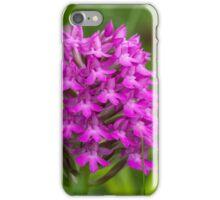 Pyramidal Orchid flower (Anacamptis pyramidalis) close-up iPhone Case/Skin