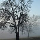 Morning Mist... iPhone Cases by © Bob Hall