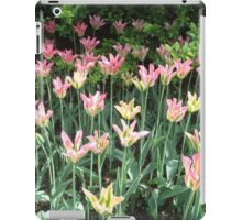 Pink and Green iPad Case/Skin