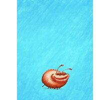 Ugly Bug Photographic Print
