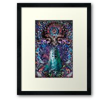 The Shamans Knowledge Framed Print