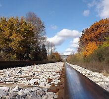 Tracks in Fall by Timothy  Ruf