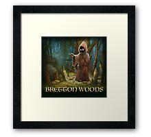 Bretton Woods Framed Print