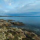 Jervis Bay, NSW by Malcolm Katon