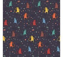 Dancing Cats. Photographic Print