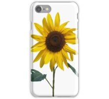 Sassy Sunflower iPhone Case/Skin