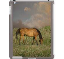4316 iPad Case/Skin