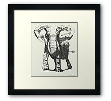 Elephant Pen and Ink Drawing Framed Print