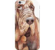Bloodhound Painting iPhone Case/Skin