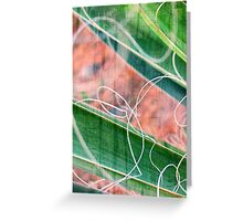 Abstract in Nature Greeting Card