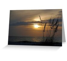 Sunset through sea oats Greeting Card