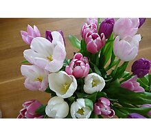 Spring Bunch Photographic Print