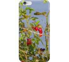 The Fruits Of Autumn Hedgerows iPhone Case/Skin