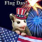 Flag Day Opossum by jkartlife