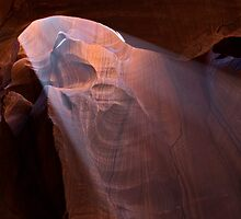 Wonderous Light in the Canyon by Lucinda Walter
