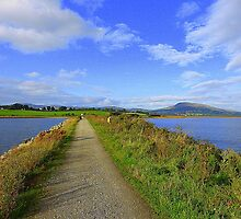 The Path Of Peace.........................................Ireland by Fara