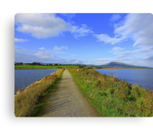 The Path Of Peace.........................................Ireland Canvas Print