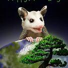 Arbor Day Opossum by jkartlife