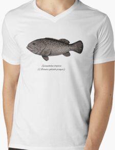 Grouper goliath Mens V-Neck T-Shirt