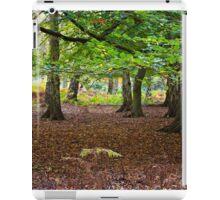 Autumn at Ashridge iPad Case/Skin