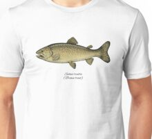 Brown trout Unisex T-Shirt