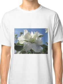Pie In The Sky Classic T-Shirt
