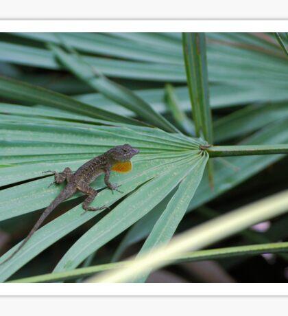 Lizard on palm frond Sticker