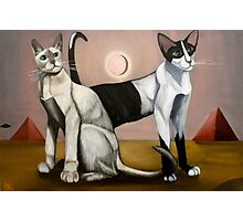 Tonkinese & Oriental Shorthair Cats, Pyramids & UFO Photographic Print