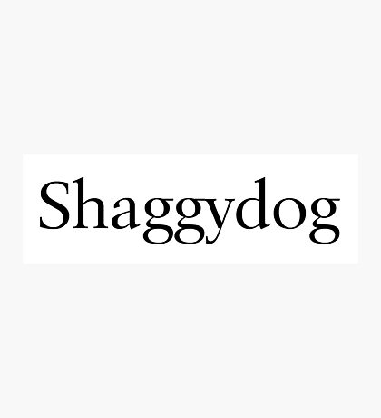 Shaggydog Photographic Print