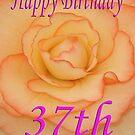 Happy 37th Birthday Flower by martinspixs