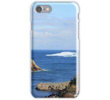 Welcome to my backyard :)  Iceberg in Quidi Vidi iPhone Case/Skin