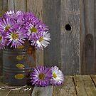 Autumn Mum Bouquet by Maria Dryfhout