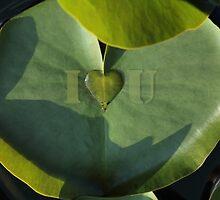 I Love You by Heartland