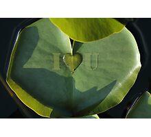 I Love You Photographic Print